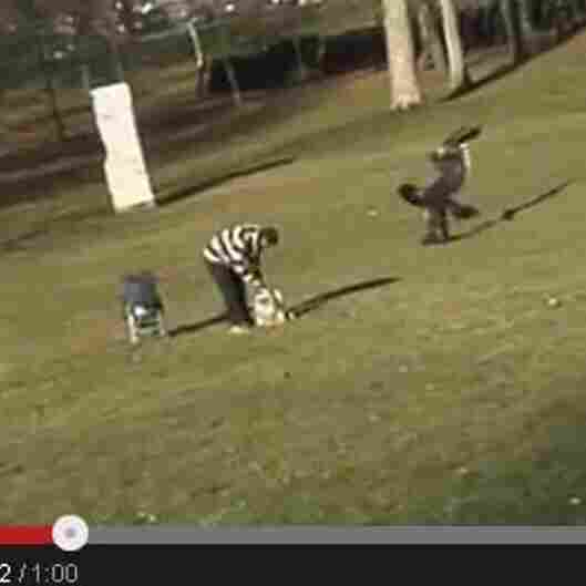 UPDATE: 'Eagle Snatches Kid' Video Makers Admit Hoax
