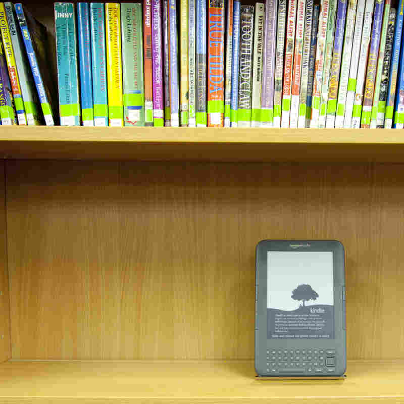 About three-quarters of public libraries offer digital lending, but finding a book you want can be frustrating — every publisher has its own set of rules.
