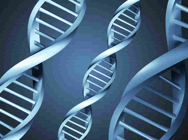 A person's DNA can say a lot about a person, but not why someone has committed a horrific crime like mass murder.