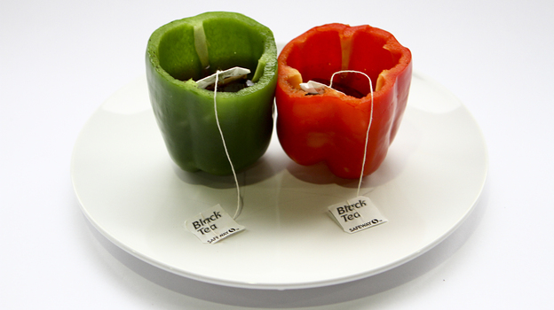 Does bell pepper and black tea sound appetizing? A computer may think so. (NPR)