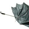 Umbrella by Will Self.