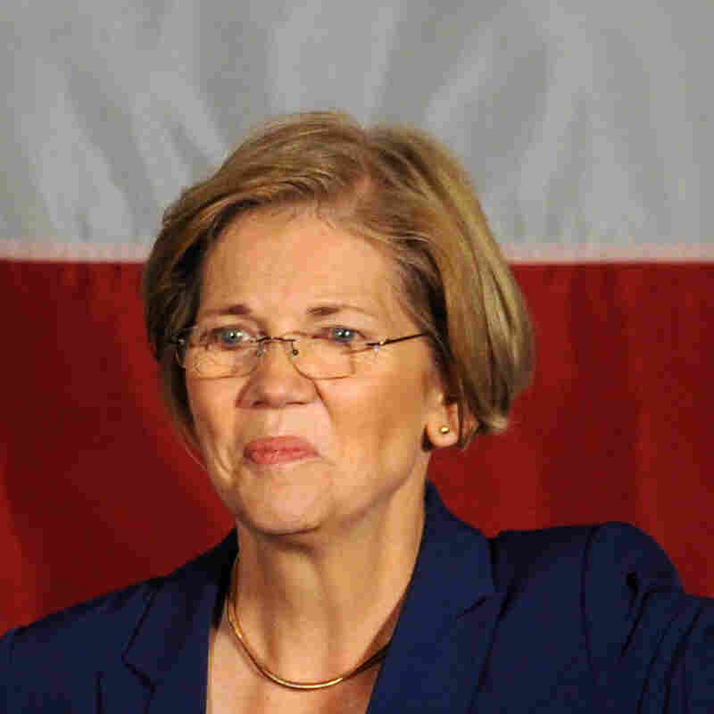 Sen.-elect Elizabeth Warren, D-Mass.