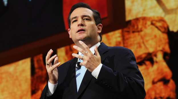 Incoming Texas Sen. Ted Cruz, who spoke during the Republican National Convention this summer in Tampa, Fla., is among a number of minority politicians seen as rising stars in the GOP. (Getty Images)
