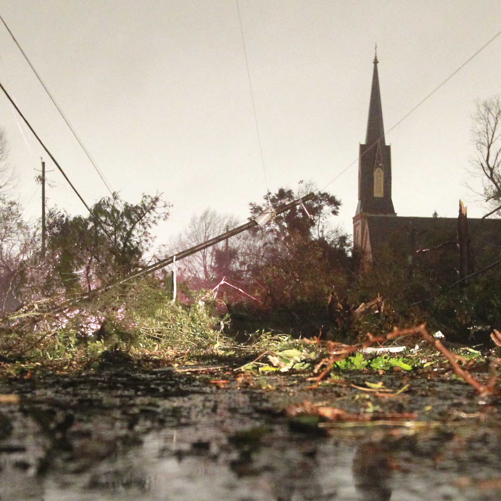After the storm in Mobile:  Downed trees and power lines on Christmas Day.