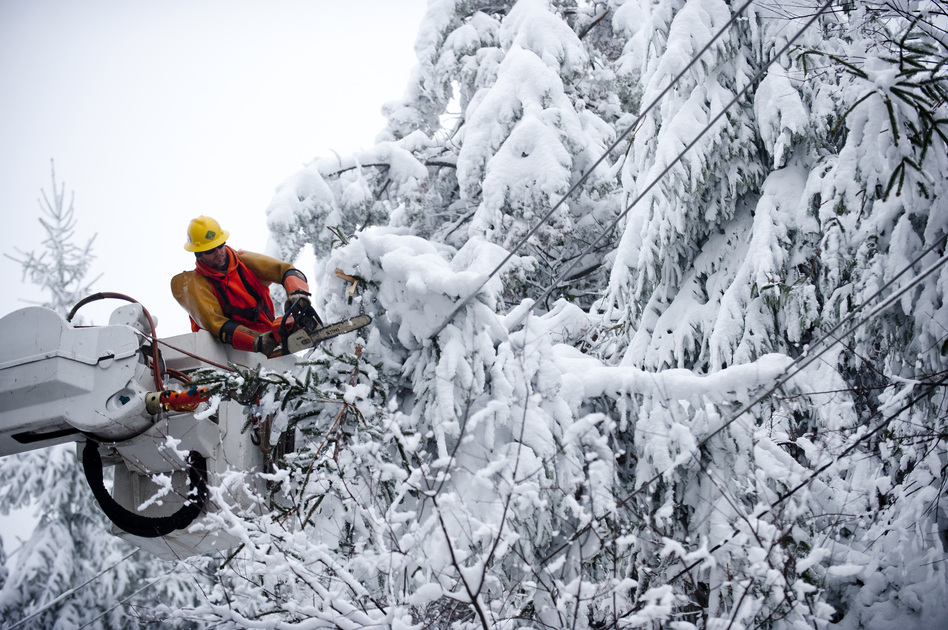 Rob Kohler, an electrical-line worker, clears snow-laden power lines on Oct. 31 in Terra Alta, W.Va. Hurricane Sandy mixed with colder temperatures in higher elevations and dumped as much as 3 feet of snow in some places. (Getty Images)
