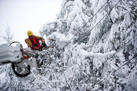 Rob Kohler, an electrical-line worker, clears snow-laden power lines on Oct. 31 in Terra Alta, W.Va. Hurricane Sandy mixed with colder temperatures in higher elevations and dumped as much as 3 feet of snow in some places.