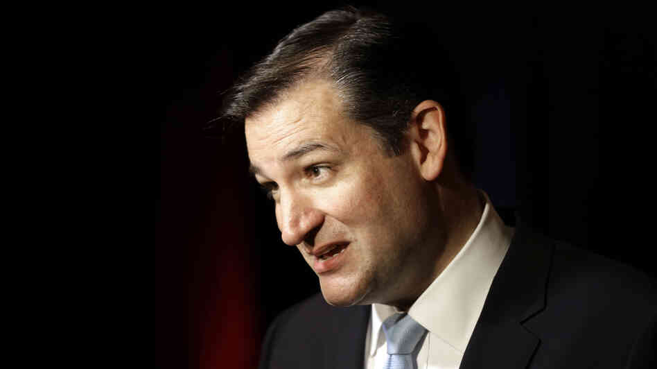 Sen.-elect Ted Cruz of Texas answers a questi