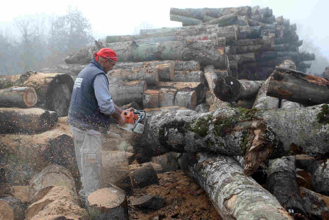 A worker cuts wood in a wood factory in Grevena, on January 2, 2013. Air pollution in cities of Greece has surged in recent days because of people choosing wood over more expensive fuels to heat their homes in the grips of a continuing economic crisis.