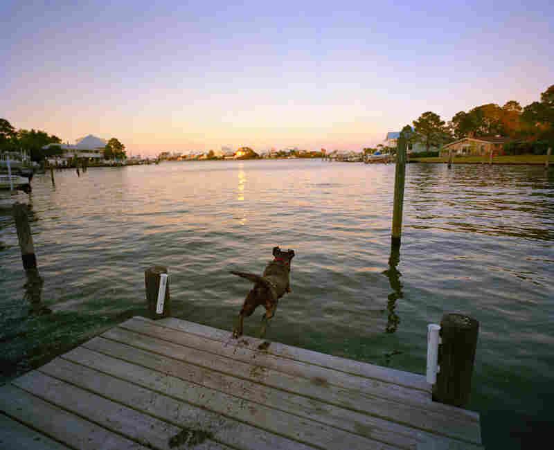 Star and Marty Singleton's pier, Dauphin Island.