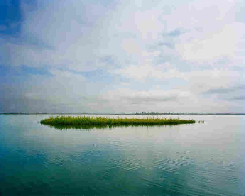 Lewis Island, Chuckfee Bay, Mobile Delta.