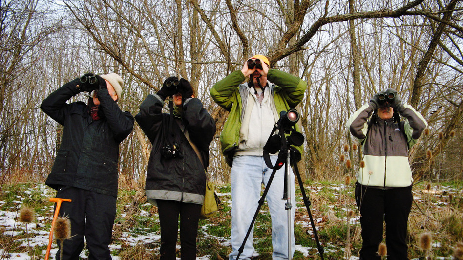 From left, bird-watchers John Williamson, Donna Quinn, Bruce Hill and Frances Raskin try to spot as many different species as possible during this season's bird count in Loudoun County, Va. (NPR)