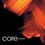 The core of a  zircon.