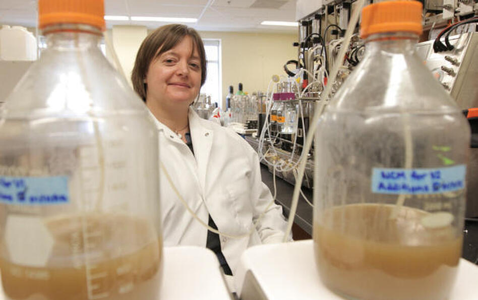 Microbiologist Emma Allen-Vercoe invented the Robogut, a mechanical device that mimics conditions in the human colon. (Courtesy of thestar.com)