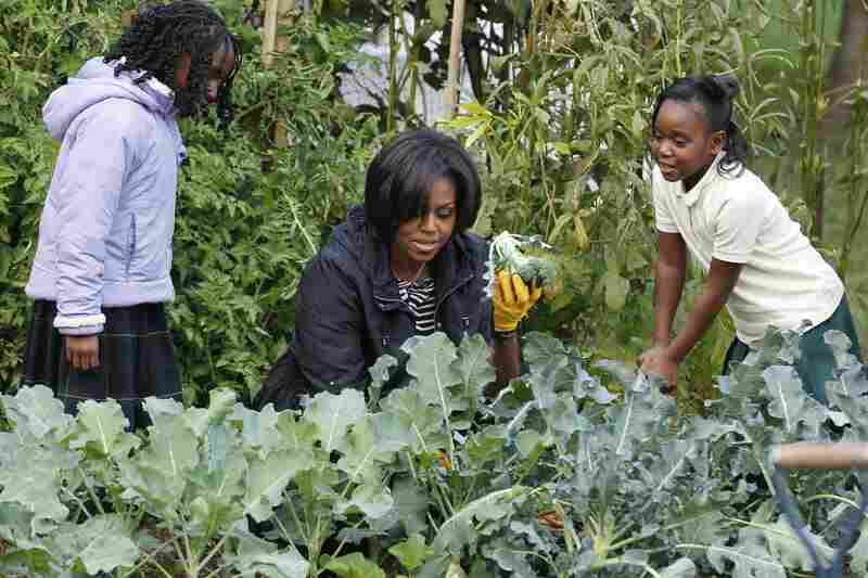 In the garden: Michelle holds up broccoli as she participates in the White House Kitchen Garden Fall Harvest with students on the South Lawn of the White House on Oct. 20, 2010.