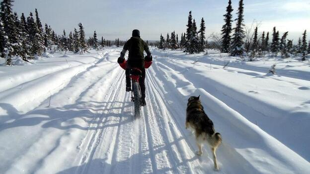 Bike shop owner Kevin Breitenbach rides a fat bike in the White Mountains National Recreation Area in Alaska in March. (Josh Spice)