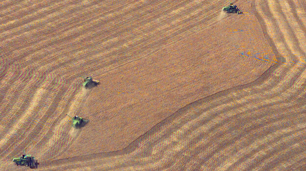 Harvest wheat from a field near Wright, Kan. May 10, 2004. (ASSOCIATED PRESS)
