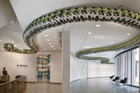 Ai Weiwei's Snake Ceiling, a serpentine form made from children's backpacks, is currently on display at the Hirshhorn Museum's