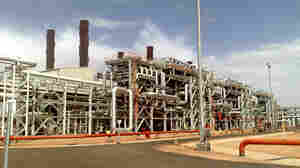 Militants attacked Algeria's In Amenas gas field last week. Thirty-seven foreigners, including three Americans, were killed in the subsequent raid by Algerian security forces.