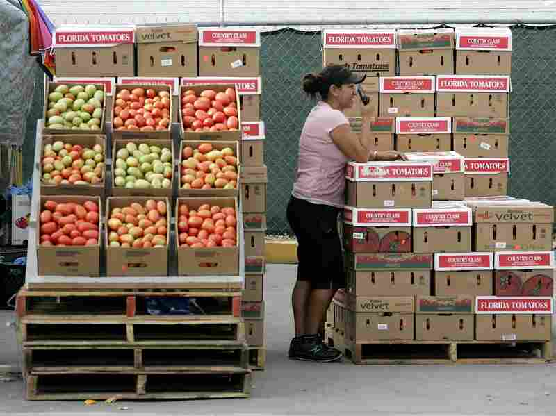 Boxes of tomatoes are for sale in an open air market in Immokalee, Fla.