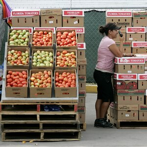 Fla. Tomato Growers Say Mexico Trade Deal Is Rotten
