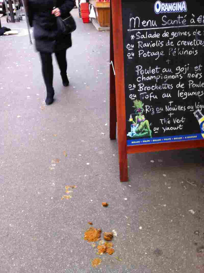 The streets of Paris are marred by messes from dogs whose owners haven't cleaned up after them. There's a fine, but the culprits have to be caught in the act (or lack thereof).