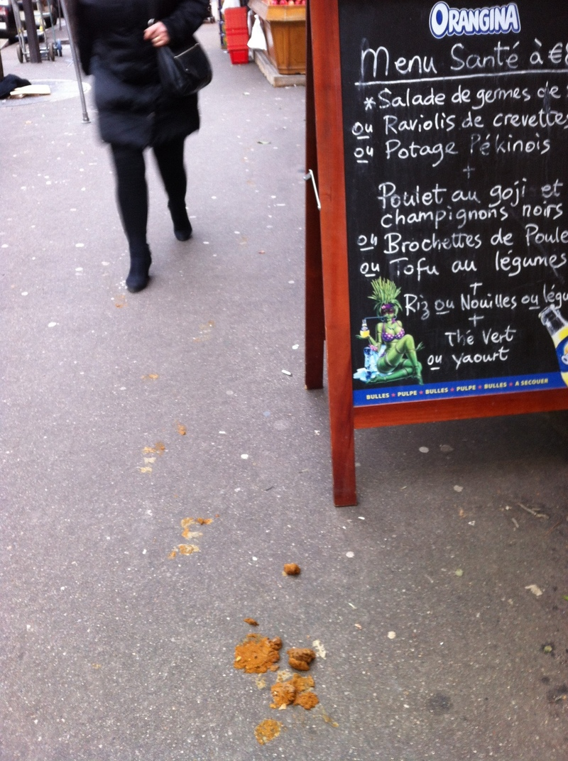 In Paris A Hunt For Those Who Dodge Dog Duties Npr