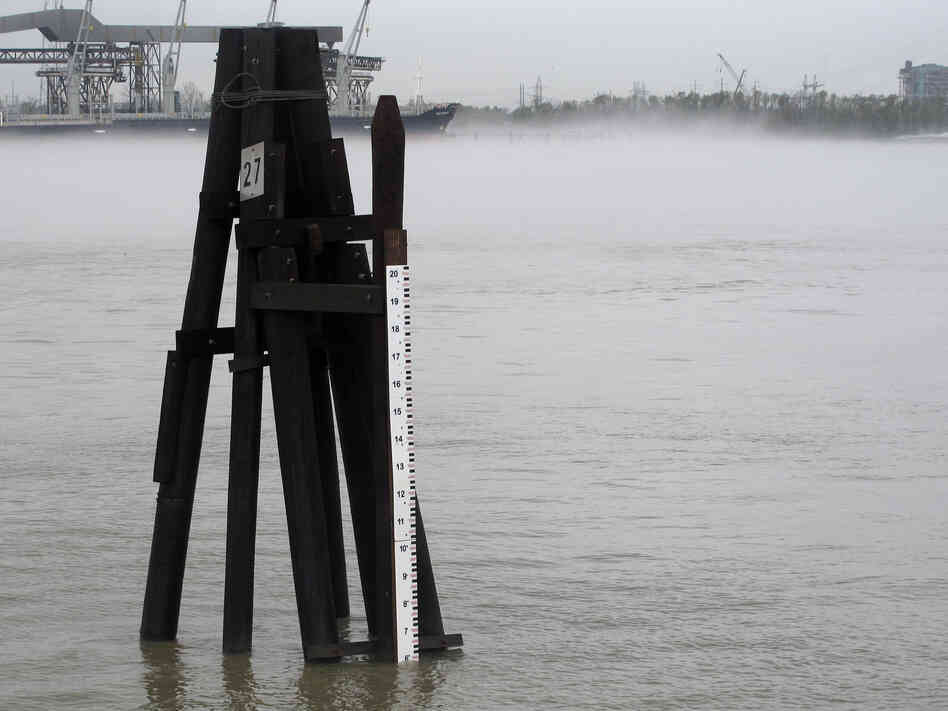 The Mississippi River is flowing at near normal levels again in New Orleans, as measured by this old-fashioned staff gauge behind the U.S. Army Corps of Engineers New Orleans District office. The Corps has been fighting saltwater encroaching up the mouth of the Mississippi because of  the persistent drought.