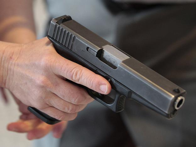 Should Gun Owners Have To Buy Liability Insurance?