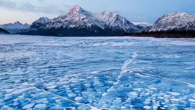 Pale Blue Blobs Invade, Freeze, Then Vanish : Krulwich ...