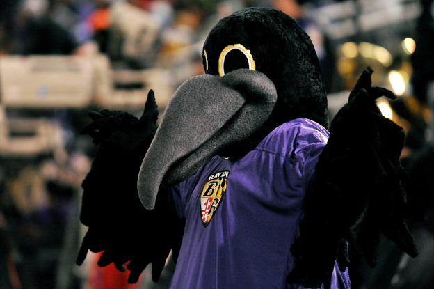 Poe, the mascot of the Baltimore Ravens, cheers on the team during the game against the Pittsburgh Steelers in December 2010.