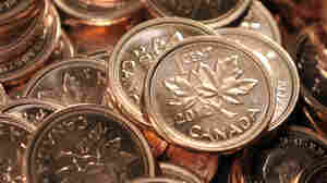 Canadian pennies. They're not going to be put into circulation anymore.