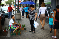 Mariluz Diaz Nieves sells orchids at an outdoor street market.
