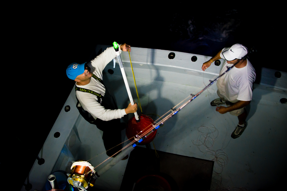 Roseman (left) and Manganello set buoys in the water. (Chip Litherland for NPR)