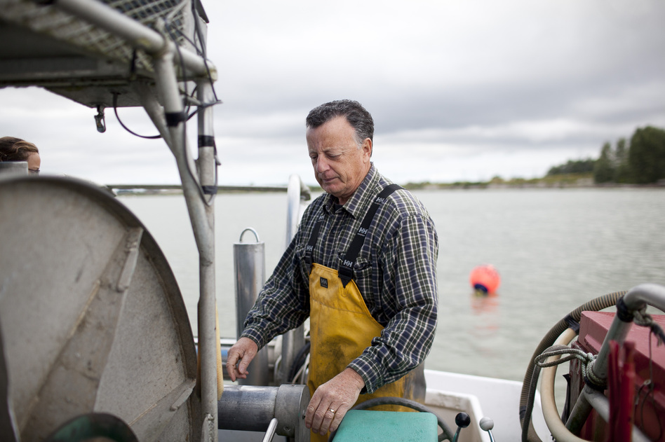 "Capt. Gordon Botkin, aboard the Miss Delta in the Fraser River near Vancouver, is helping researchers study the sockeye salmon population. The MSC recently certified sockeye as ""sustainable,"" even though scientists argue that their population is declining. (Brett Beadle for NPR)"