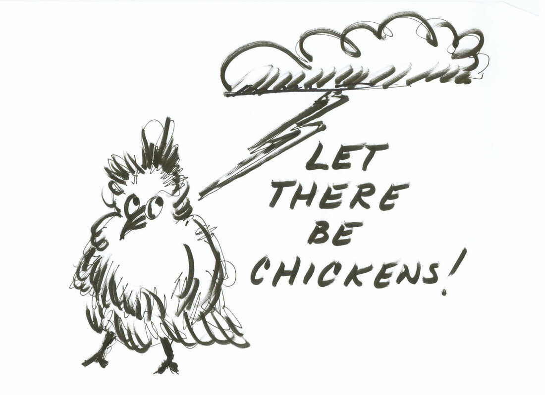 Let there be chickens!