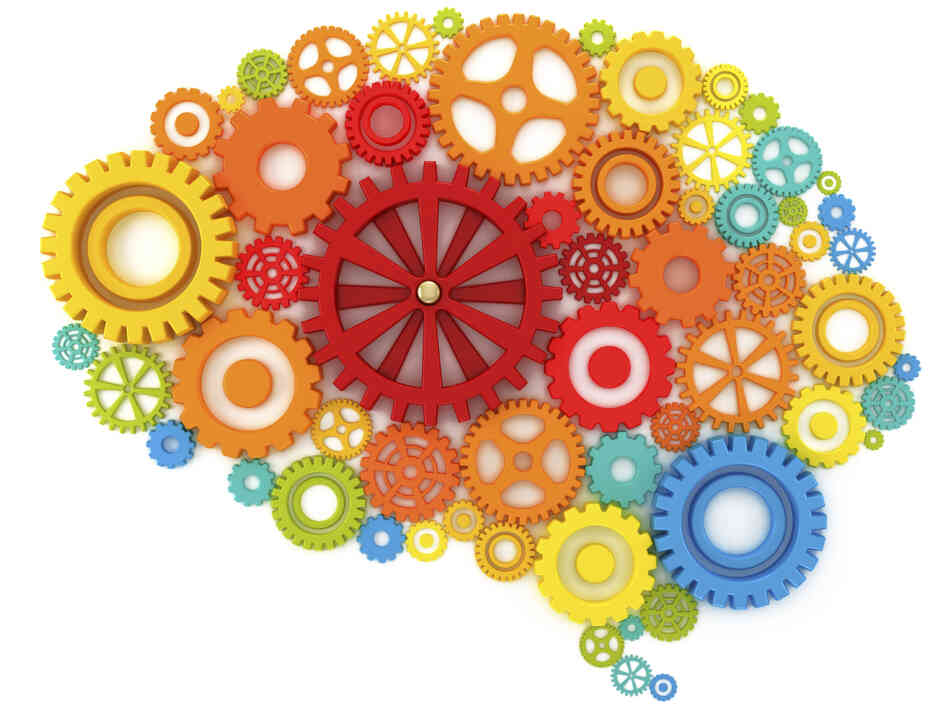 An illustration of a brain as a series of cogs.