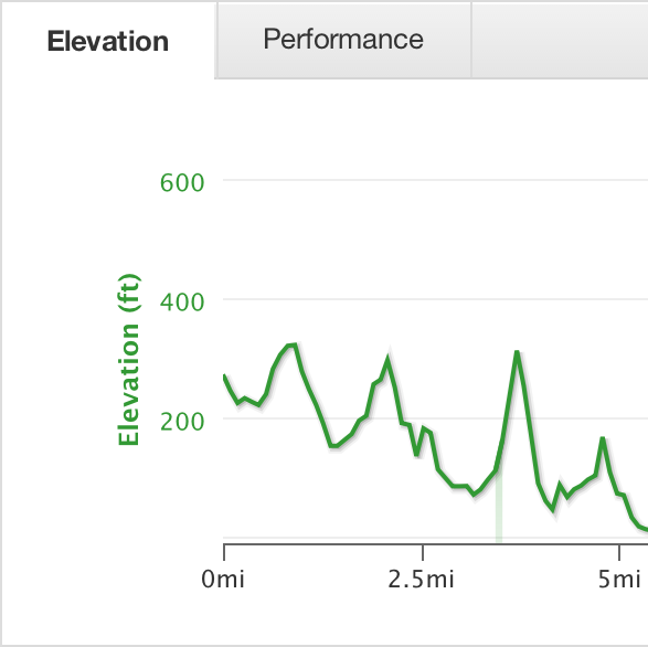 Elevation map of Payam's ride
