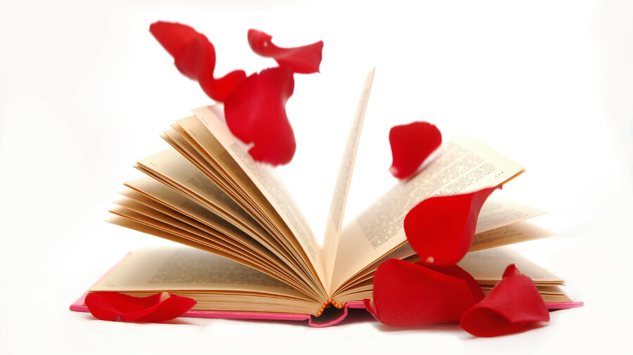 romance novels - Valentines Day Book