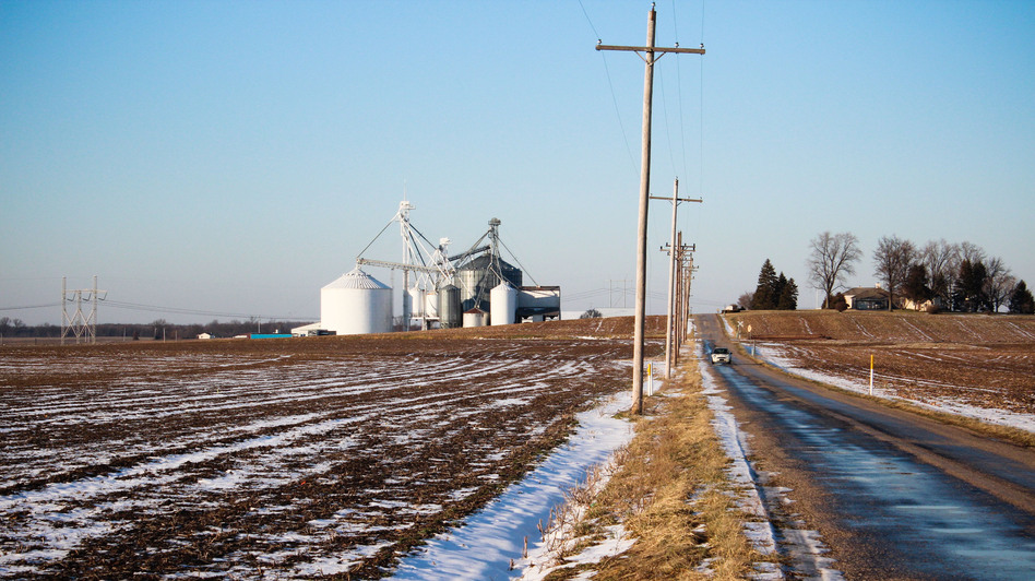 Bowman bought ordinary soybeans from this small grain elevator and used them for seed. (NPR)