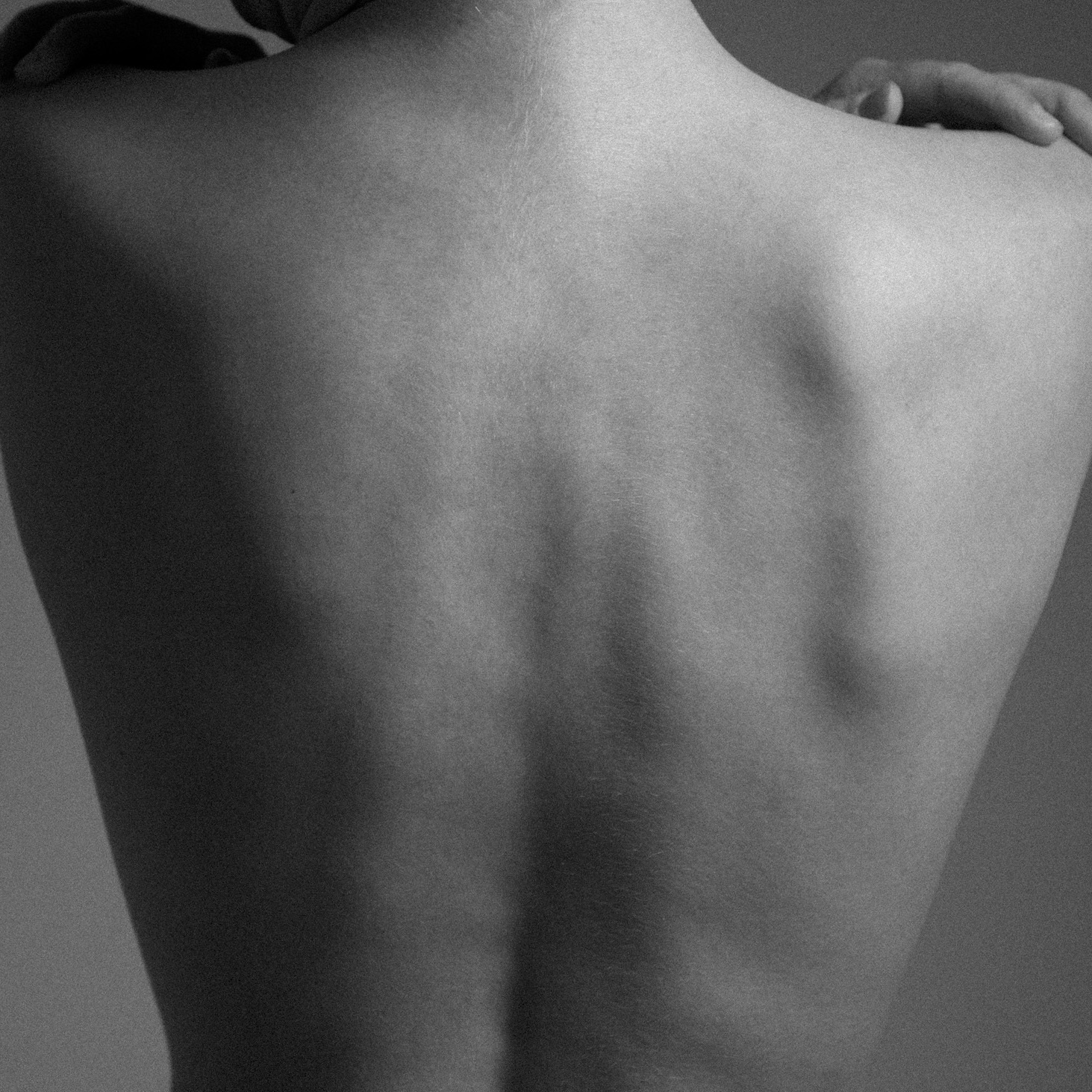 Rhye's debut album, Woman, comes out March 5.