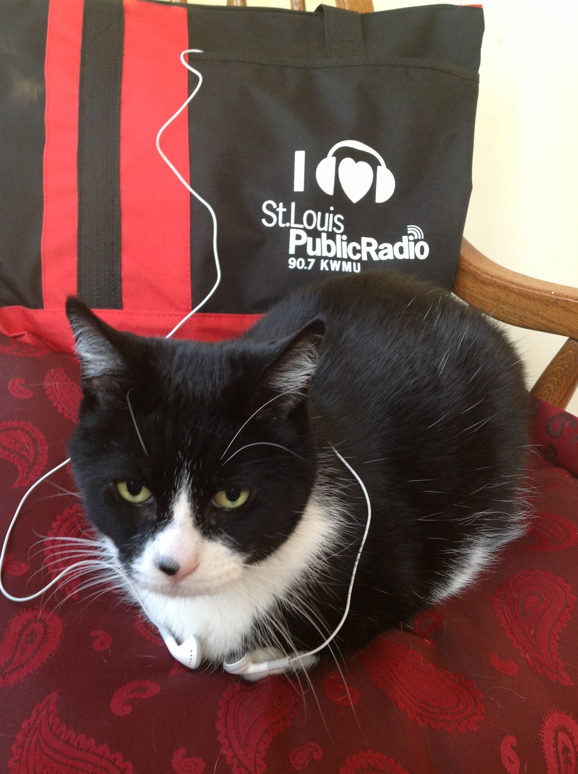 """Owen listens to KWMU in St. Louis, MO."""