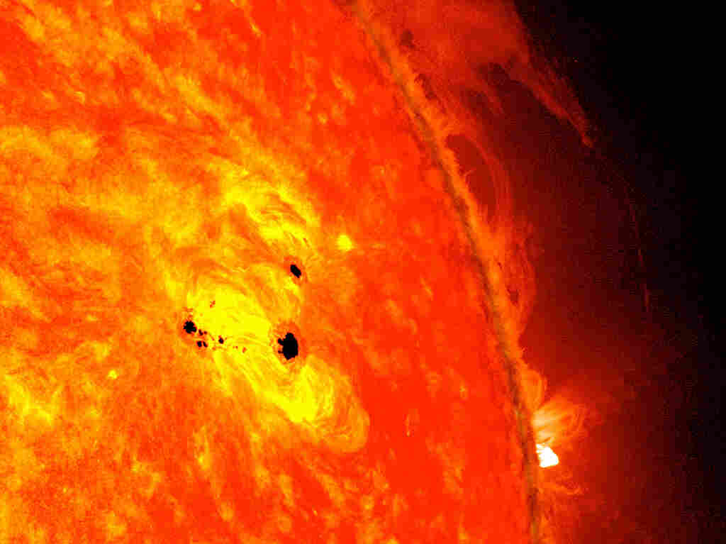 The bottom two black spots on the sun, known as sunspots, appeared quickly over the course of Feb. 19-20, 2013.