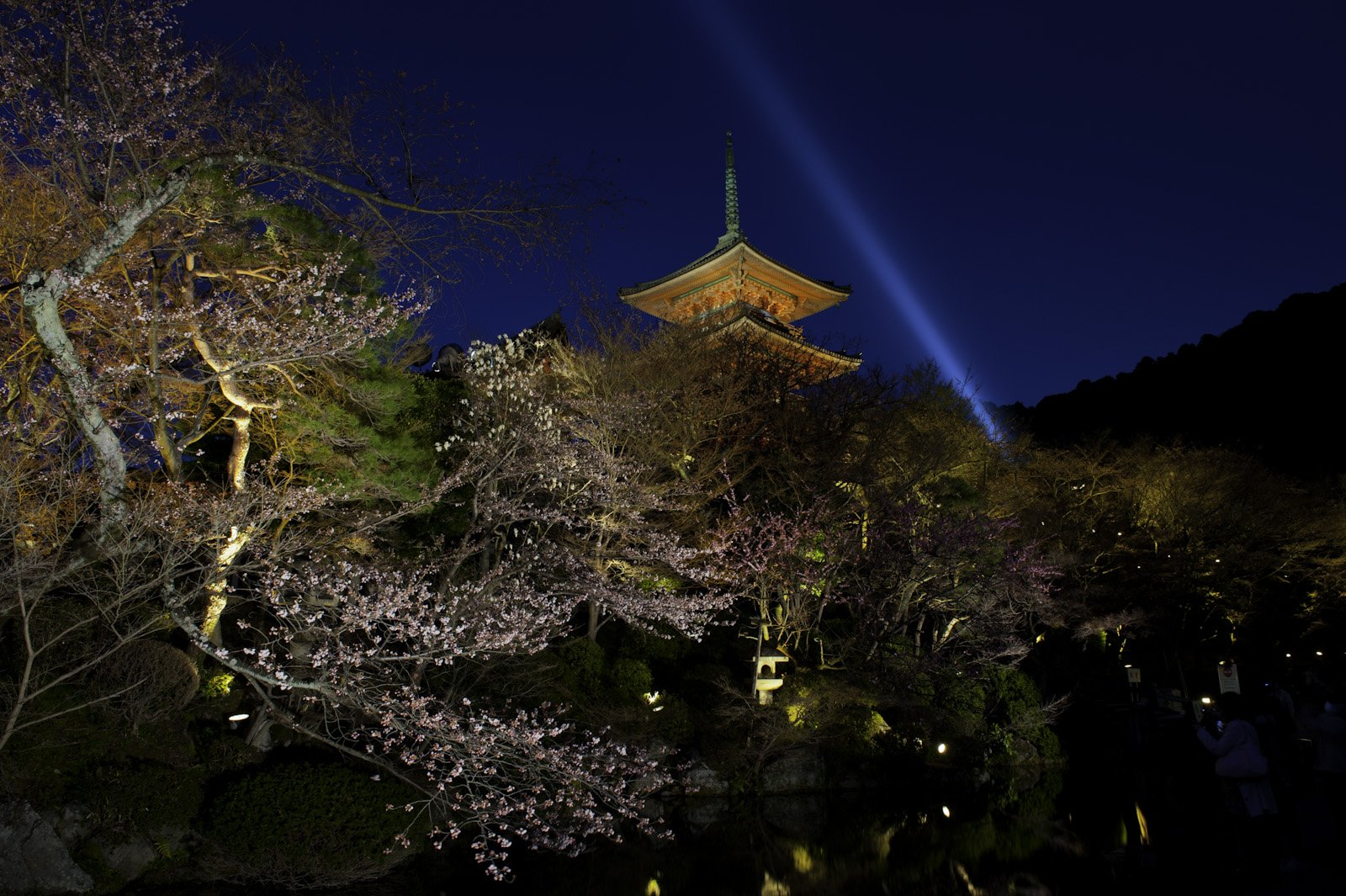 Hanami (flower viewing), Sakura (Cherry Blossom Festival), Kiyomizu-Dera Temple, Kyoto, Japan