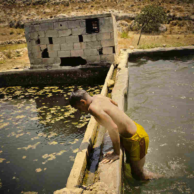 A Palestinian teenager bathes in the ancient farming pools of Wadi Fuqin.