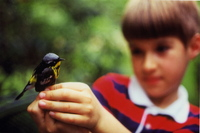 In this childhood photo, Prosek holds a dead magnolia warbler that flew into the window of his family's living room.