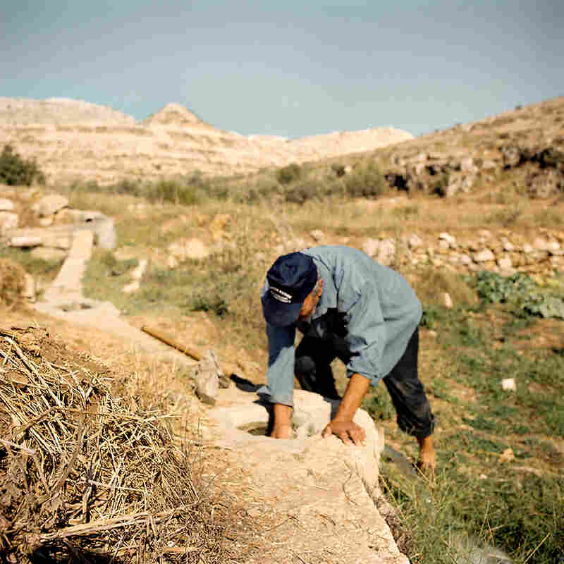 Jamil is treating the ancient canal, letting the water flow to his fields. The ruined landscape in the background is a result of quarrying stones for the settlement construction.