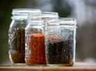 Three types of lentils in jars