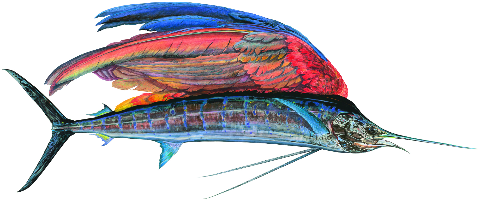 "Sailfishe, a monumental 10-foot painting of a hybrid creature, shows a glistening life-size Pacific sailfish that Prosek caught in Mexico -- only instead of a dorsel fin, the fish has a colorful parrot wing. ""With all that we know now, imagination is becoming extinct,"" says Prosek. ""I am trying to forget. I am pretending to be a naturalist from a time past."""