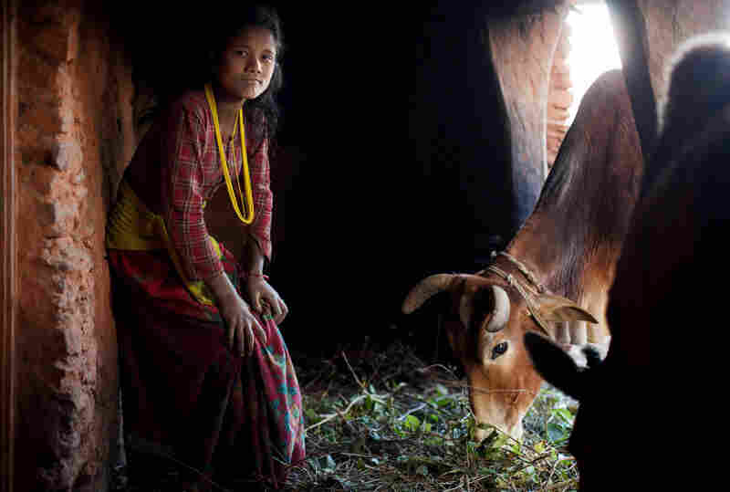 Lalita, 14, poses for a photo inside the household chaupadi shelter, a squat crawlspace under the home shared with the family's animals. Lalita sleeps in the dark space behind where the cows are fed, lighting a fire to protect herself from the elements.