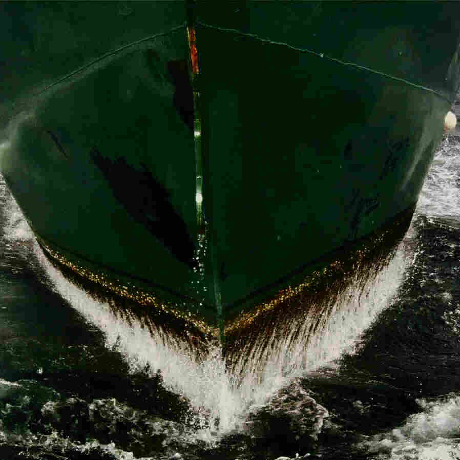 The dingy commercial fishing boats that dot the waters off the Atlantic coast of the U.S. and Canada have lives all their own in the new documentary Leviathan.